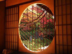 東福寺の紅葉は京都一!窓越しに紅葉を見る光明院の庭園が特に美しい