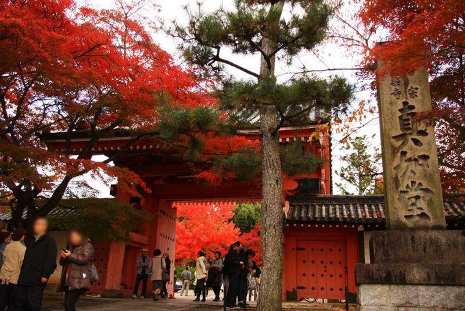 紅葉が楽しめる天台宗の寺 真如堂