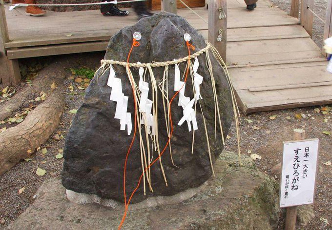 平野神社に来たら未知なる力を授かろう