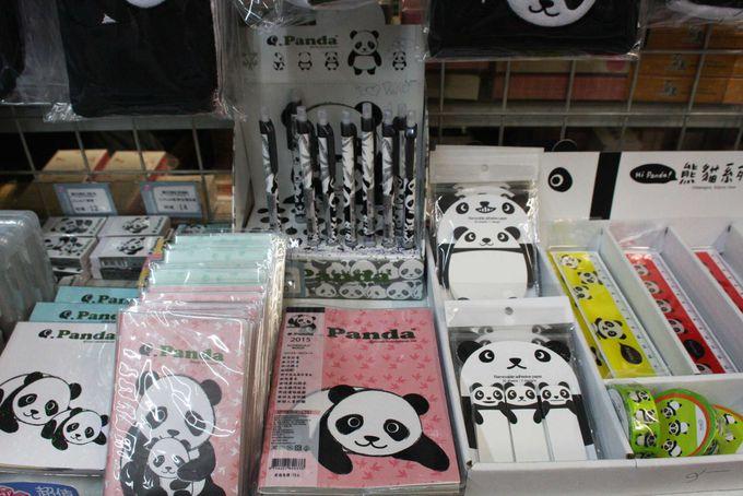 パンダ雑貨が超キュート!