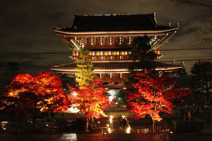 金戒光明寺の秋の特別公開