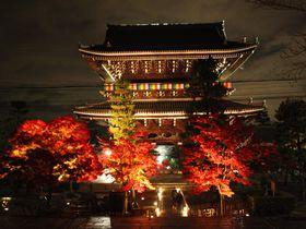 金戒光明寺(京都)の紅葉ライトアップは池に映る紅葉が美しい