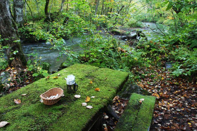 渓流モーニングカフェは宿泊者のみ味わえる至福の時間
