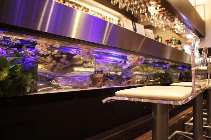 熱帯魚が泳ぐアクアリウムカウンター