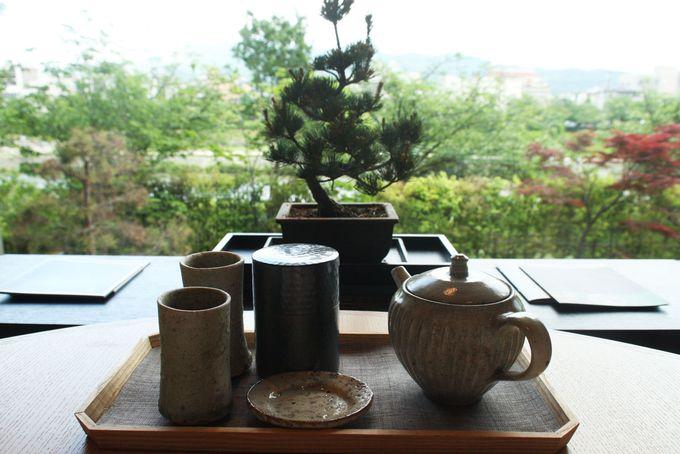 日本らしい盆栽でほっこり