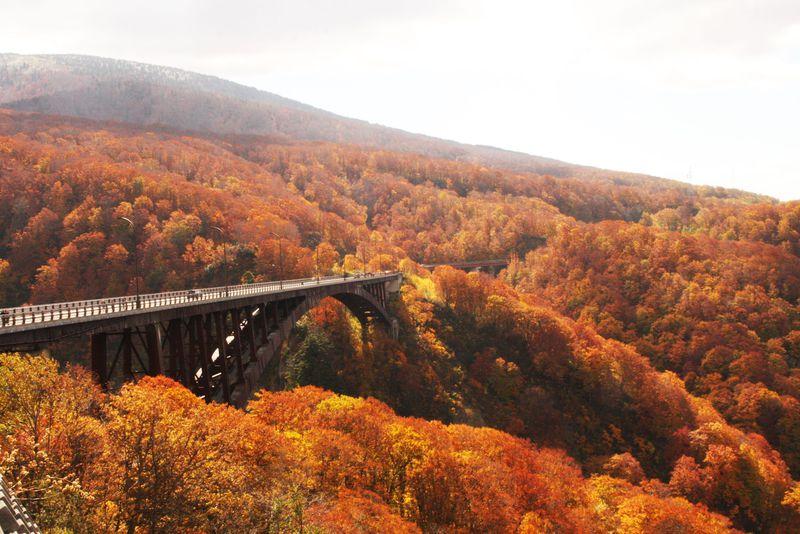 青森一の紅葉!城ケ倉大橋は八甲田連峰が一望できる展望スポット!