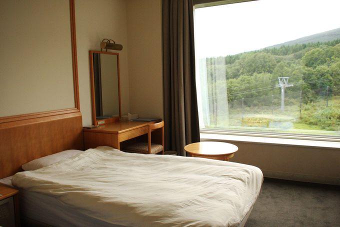 大きな窓が特徴のお部屋