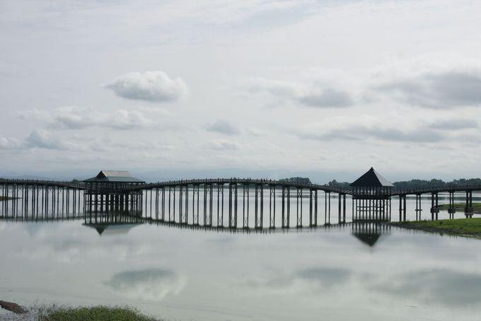 青森県にある鶴の舞橋はつがいの鶴が飛翔する姿