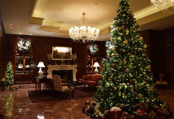 3.5mの伝統的なクリスマスツリー