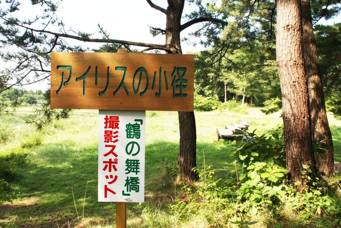 津軽富士「岩木山」のベストスポット!