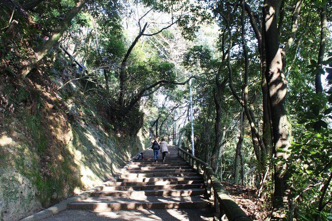 石清水八幡宮のアクセスは男山ケーブル?徒歩?