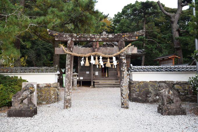 不思議なうろこ状の石「磯良恵比須」