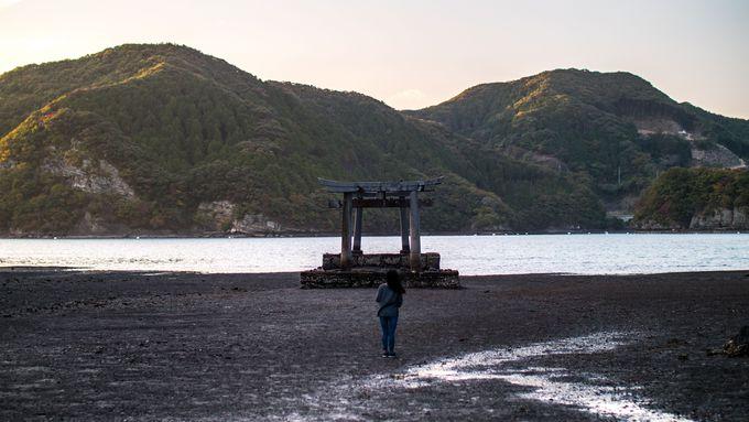 2つの鳥居が海中にそびえる和多都美神社