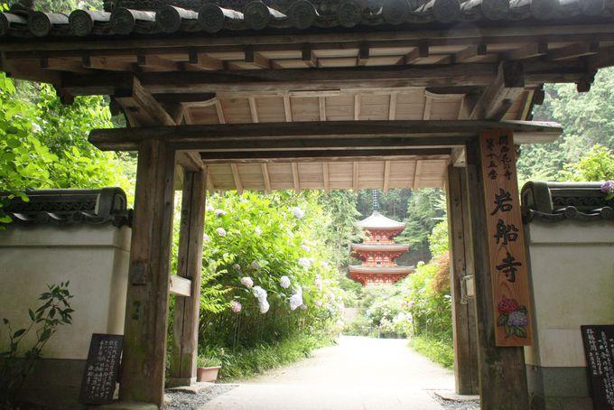 紫陽花に囲まれる古寺「岩船寺」