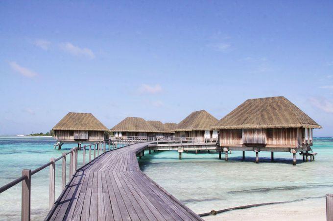モルディブで憧れの水上コテージ滞在