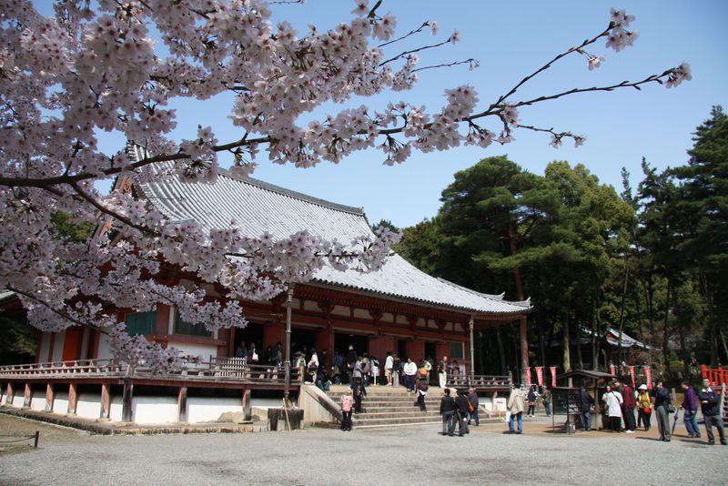 春になったら絶対行きたい!京都のおすすめ観光スポット10選
