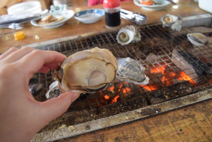 1日目ランチ&PM:海の幸ランチと祐徳稲荷神社