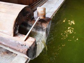 翡翠色の温泉は美肌効果抜群!緑づくしに癒される長野・熊の湯ホテル