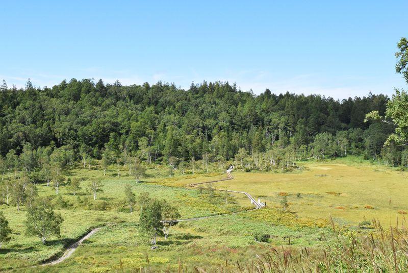志賀高原の魅力がギュっと詰まったハイキングなら自然探勝コース!