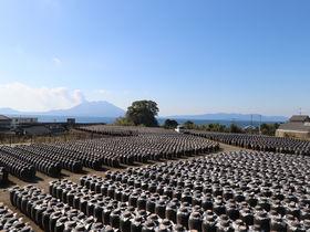 黒酢発祥地・霧島で黒酢三昧!見て食べてキレイになる坂元のくろず「壺畑」
