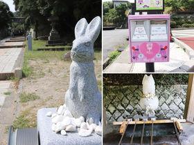 民芸と万葉の地・鳥取市へ!ヘルシー食と絶景も楽しめる女子旅2泊3日モデルコース