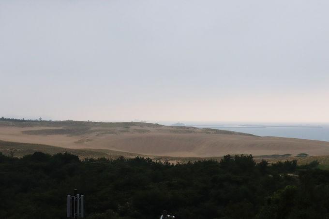 鳥取砂丘 砂の美術館のダイナミックな砂像