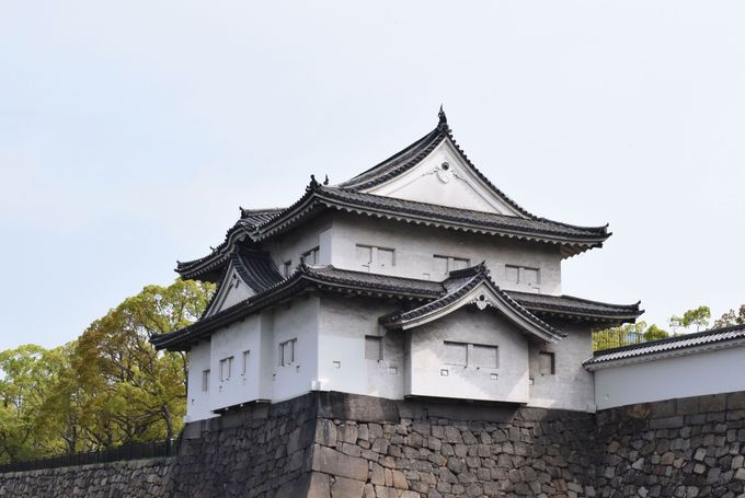 日本の城の最高峰の櫓を見学