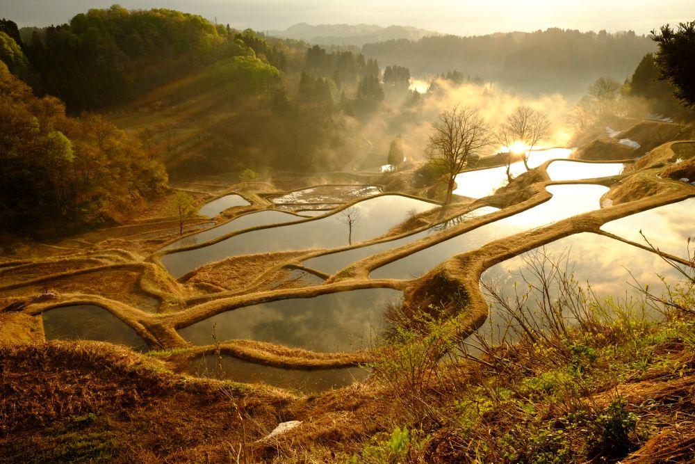 日本の原風景が残る「新潟県十日町市」