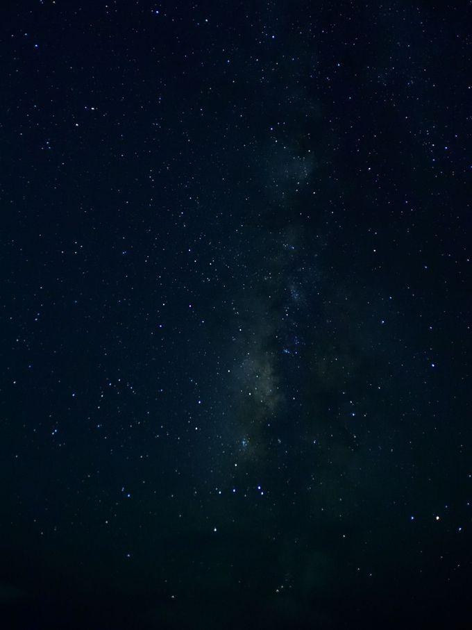 夕食をすませたら、星空を見にでかけましょう!