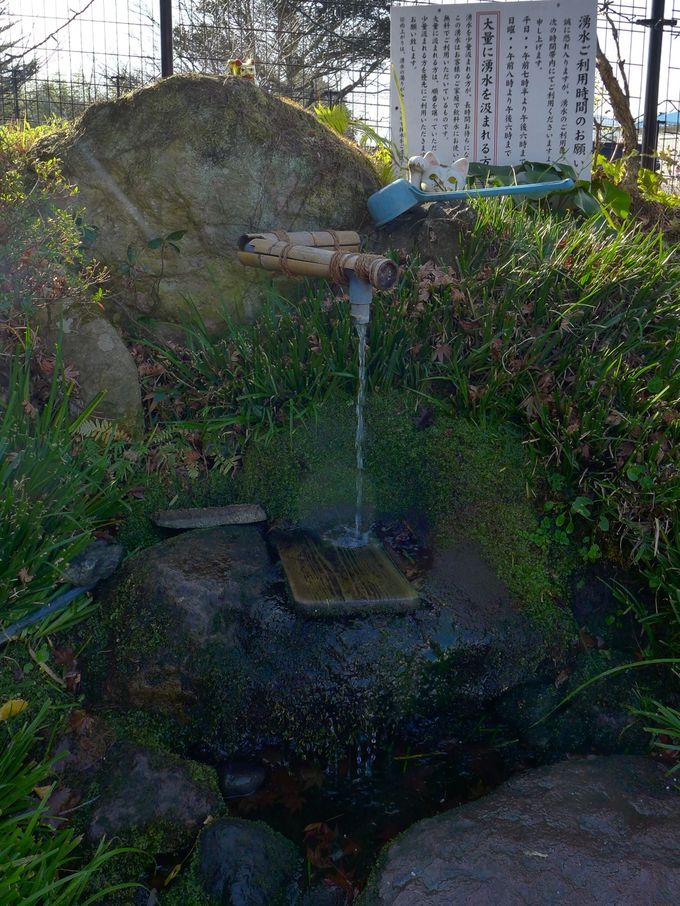 敷地内には湧水が!