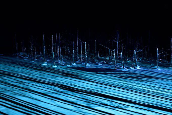 真冬の夜に美しい「青い池」のライトアップ