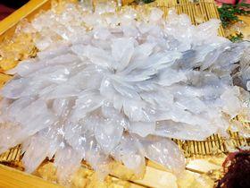 透明で美しい!佐賀・国民宿舎 波戸岬で新鮮なイカをいただこう