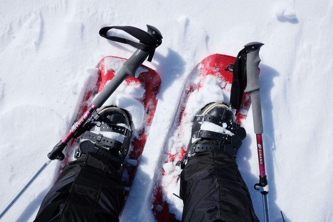 雪上車で下山する?それとも、歩く?