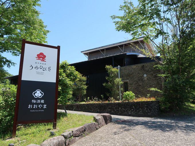 大分県日田市大山町は梅の産地!梅酒蔵では試飲もOK