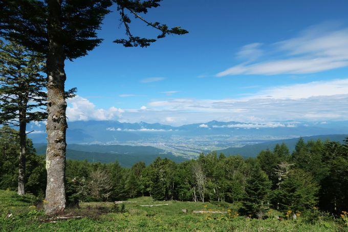 標高1,800メートルの絶景 鹿嶺高原キャンプ場