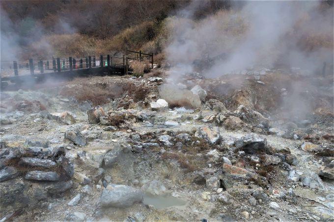 筋湯温泉に行く前に、地獄を見学しよう