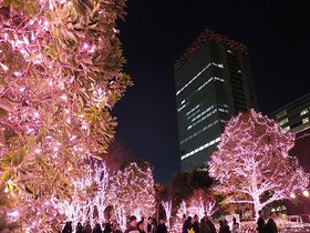 新宿半日観光!新宿御苑から東京都庁まで南口から西口をぶらり旅
