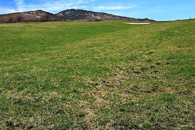 ハイジがいそうな広大な牧場