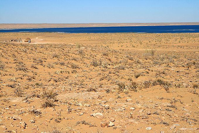 古代ホレズム王国の遺跡が残るキジルクム砂漠