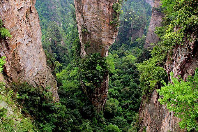 巨大な石柱が林立する武陵源