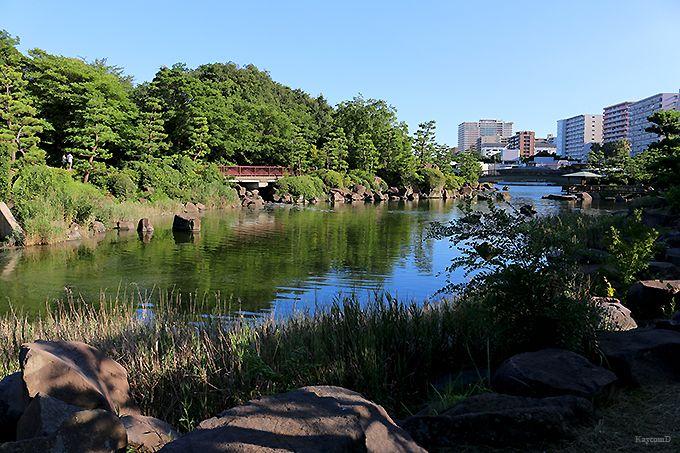 勝浦運河としながわ区民公園
