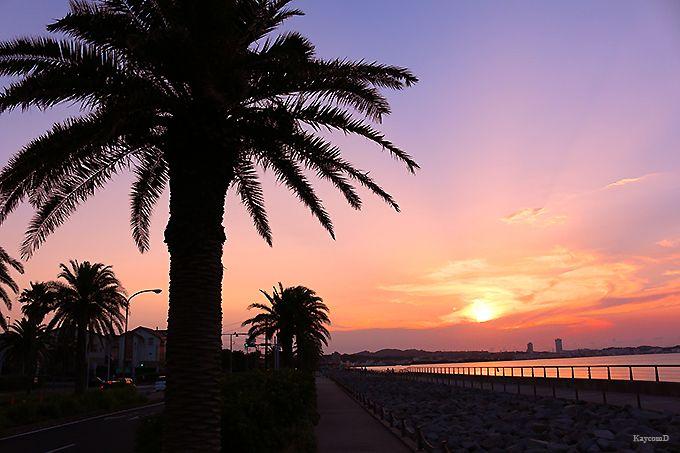 夕日の名所!横須賀の観音崎から馬堀海岸まで「うみかぜの路」を潮風散歩