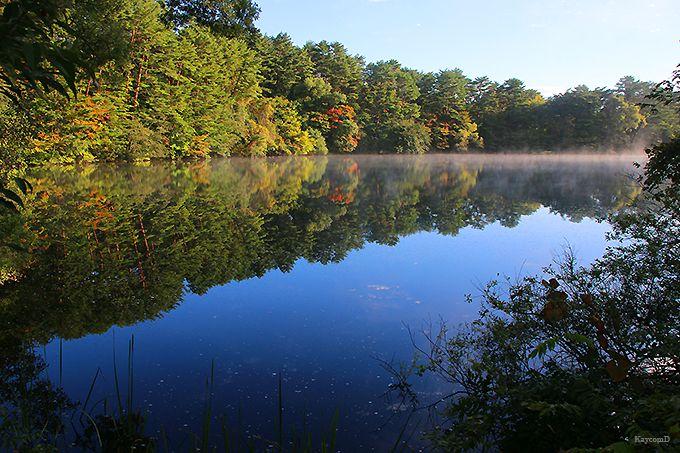 朝もやに煙る神秘的な湖沼