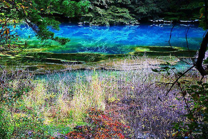五色沼の中で一番青い「青沼」