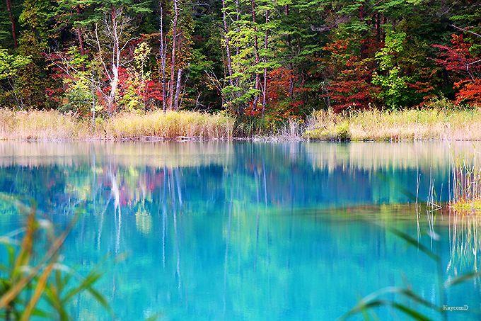 五色沼で一番大きな「毘沙門沼」と二番目の「弁天沼」