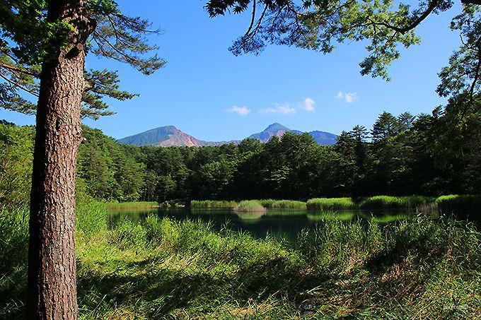 磐梯山も綺麗に見える「瑠璃沼」