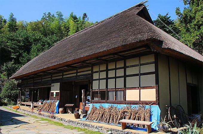 重要文化財「吉田家住宅」