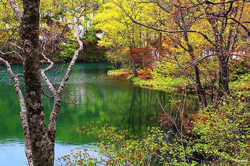 総合マウンテンリゾート!山形県「蔵王温泉」で湯巡りと蔵王連山の大自然を満喫