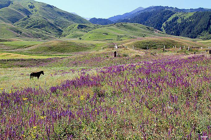 絵本のような風景が広がるチョンケミン渓谷