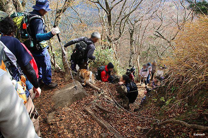 矢倉沢峠から山頂